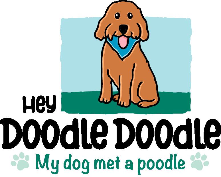 Hey Doodle Doodle Goldendoodles